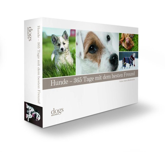 Covergestaltung_Dogs.jpg
